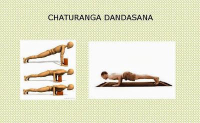 yoga  chaturanga dandasana la posizione del bastone a terra