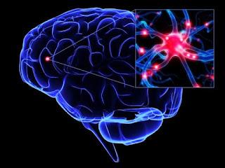 Obat Epilepsi Alami - Cara Aman Mengobati Epilepsi