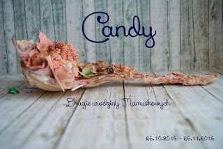 Candy u Wiki