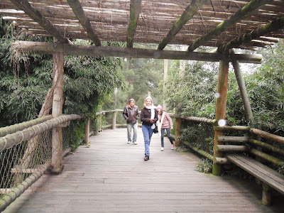 conhecendo a América Latina; Argentina; Buenos Aires; turismo América Latina; Bioparque Temaiken