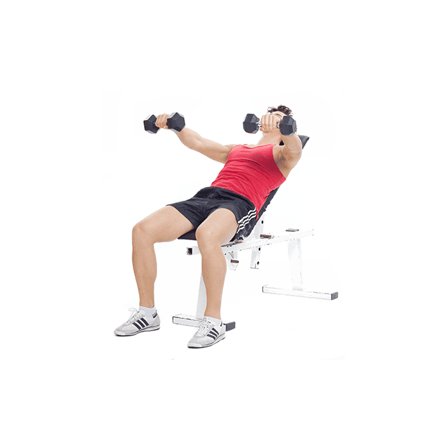 Seated_Dumbbell_Presses_5_sets_and_3/3/3/2/1_reps