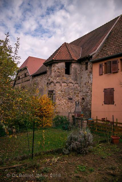 Fortifications de Bergheim (Alsace). Enceinte intérieure du XIVe s.