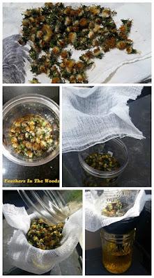 make dandelion oil from flowers