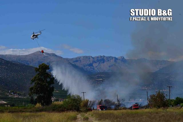 Καίγεται δασική έκταση στην Ηλεία - Ρίψεις από ελικόπτερο