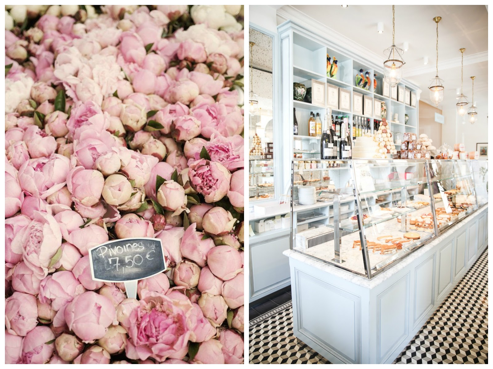 Laduree macarons | Peonies | Inspiration