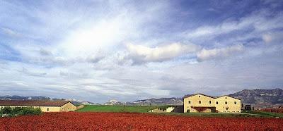 De viajeros por La Rioja. 10