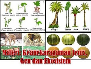 Rangkuman Materi Keanekaragaman Jenis, Gen dan Ekosistem