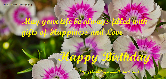 Happiness, Love, Gifts, Birthday, Card, True Picture