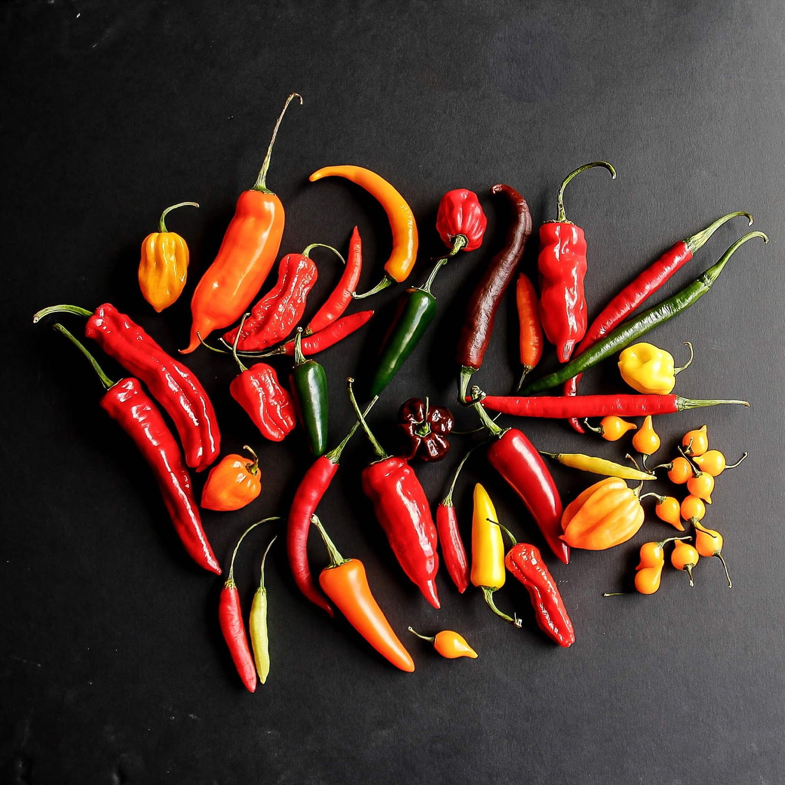 About chilli peppers and Homemade roasted chilli sauce ...