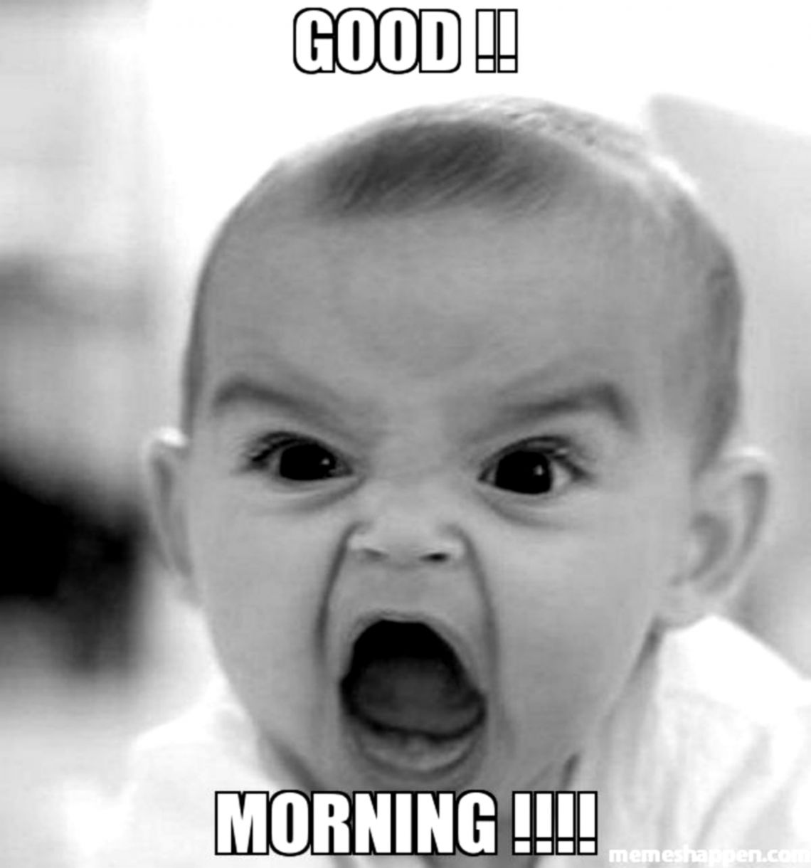 Funny Goodmorning Pictures Wallpapers Warrior