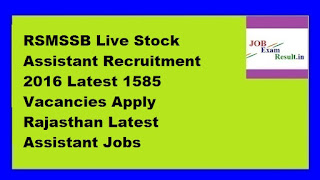 RSMSSB Live Stock Assistant Recruitment 2016 Latest 1585 Vacancies Apply Rajasthan Latest Assistant Jobs