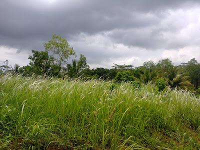 Hujan-Hujanan Dulu dan Sekarang
