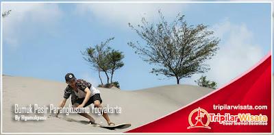 Gumuk Pasir Parangkusumo Bantul Yogyakarta