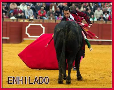 Diccionario taurino 12079164_832323146885122_1214163047123736369_n