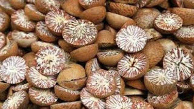 Geographical Indication Tag For Sirsi Supari