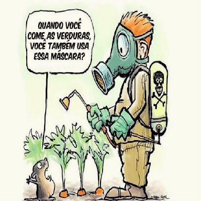 Resultado de imagem para alimentos agrotóxicos