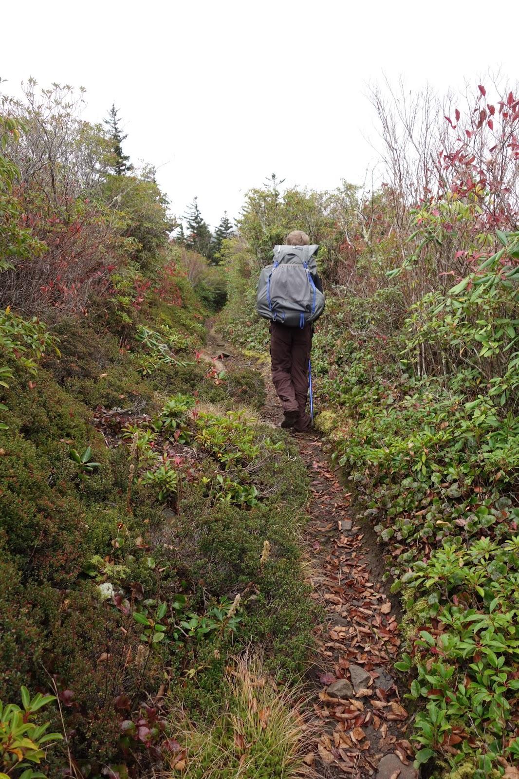 Aidan on trail