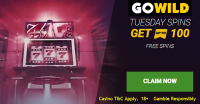 Tuesday 100 Free Spins offer | Go Wild Casino