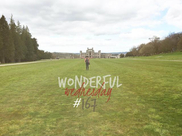 Wonderful Wednesday #167
