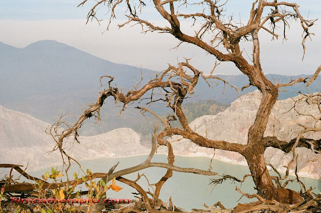 Ijen Crater Excotic