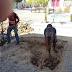 Assunção: Sec.de Infraestrutura realiza consertos de calçamento no centro da cidade