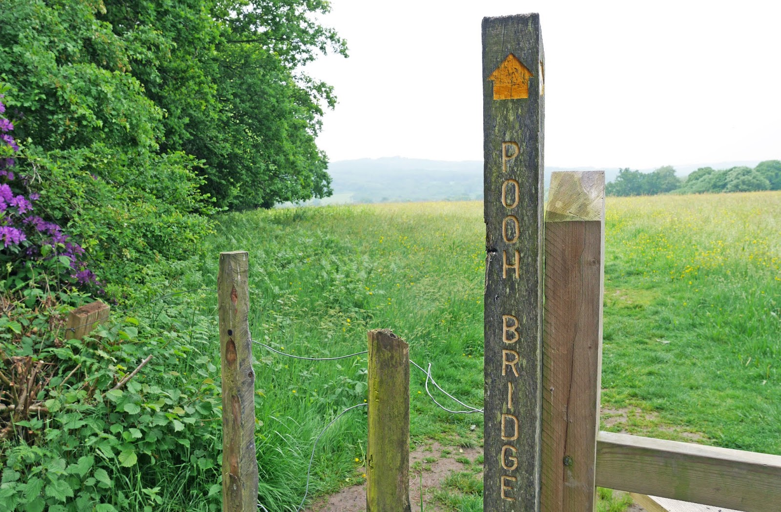 Footpath sign in the direction of Pooh Bridge, Ashdown Forest