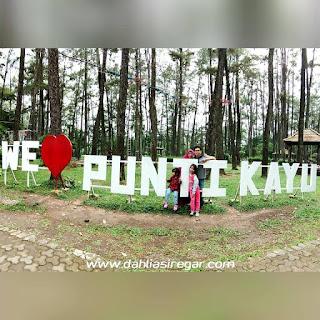 Wisata Hutan Punti Kayu
