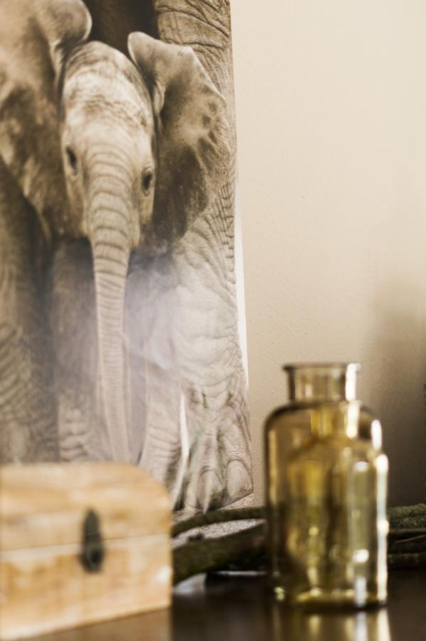 Blog + Fotografie by it's me! ... fim.works - Mein Shelfie im April, Elefanten-Bild, Apothekerflaschen