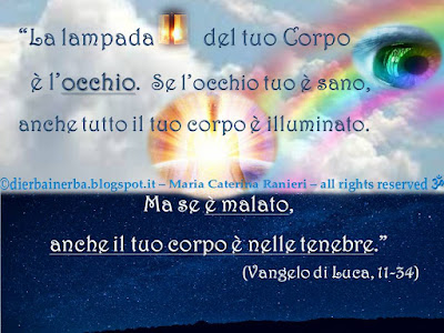©http://dierbainerba.blogspot.it – Maria Caterina Ranieri – all rights reserved ॐ