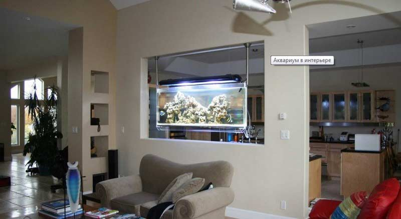How to make wall aquarium and wall fish tank diy for Fish tank built into wall