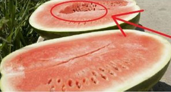 semangka berbahan kimia