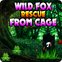 AvmGames Wild Fox Rescue From Cage