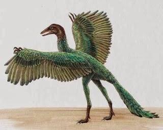 Foto Archaeopteryx