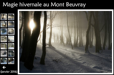 http://instantalautre.free.fr/galeries2016/paysage/neigemontbeuvray/