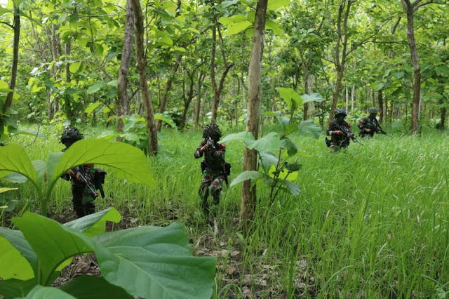Pelihara Kemampuan Bertempur, Yonif R 514 Kostrad Laksanakan Latihan Pemantapan Raider