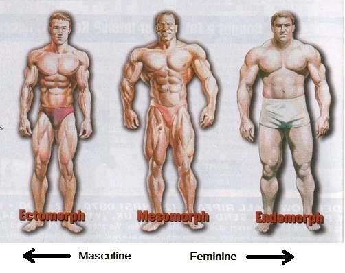 how to become more masculine