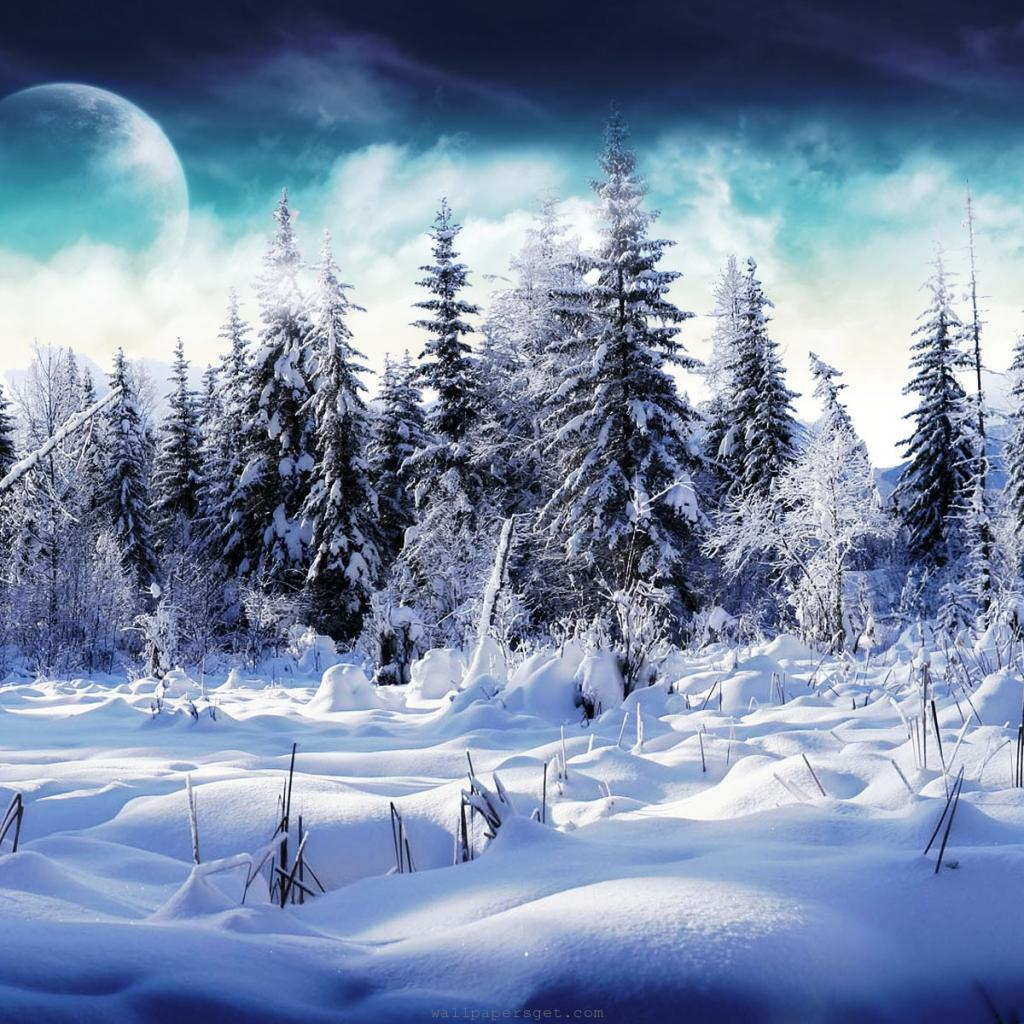 ipad wallpapers free download 2012 christmas winter