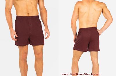 Bamboo Boxers Shorts