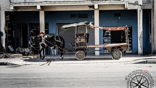 carro de caballos