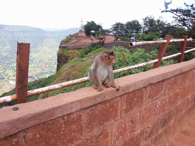 A bike ride to Echo Point Mahabaleshwar from Pune
