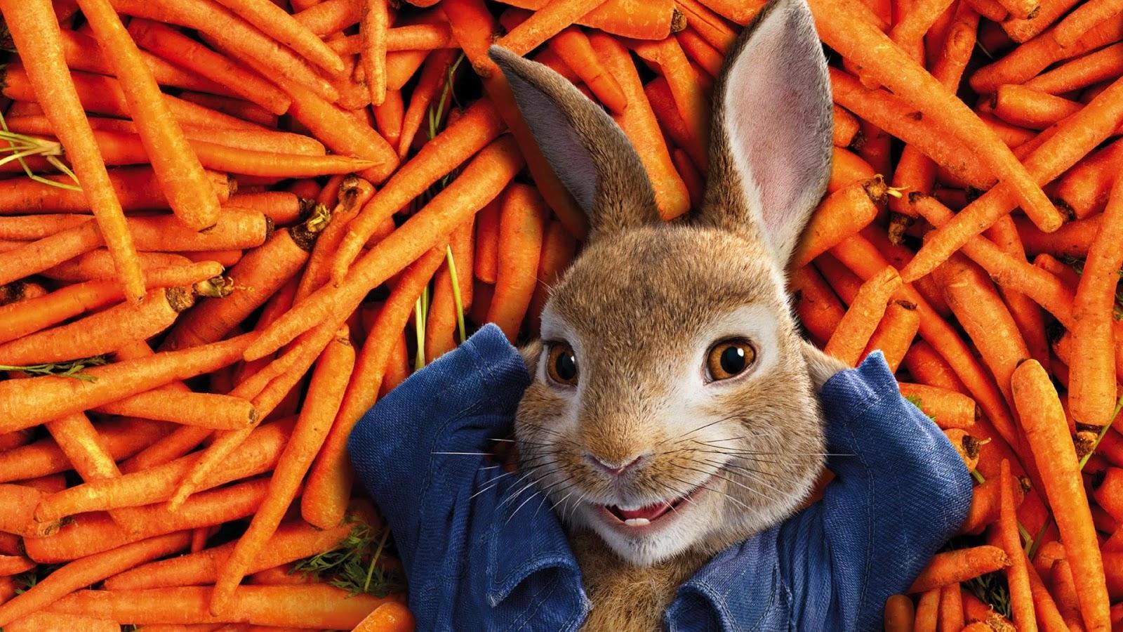 Resultado de imagem para pedro rabbit movie