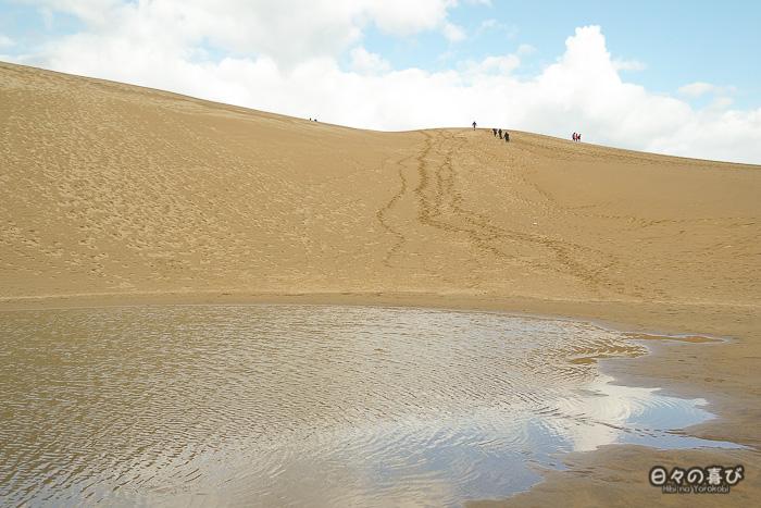 vue sur les dunes depuis le bord de la mare