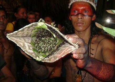 Sadis! Inilah Ritual yang digunakan untuk Membuktikan Kedewasaan Seeorang