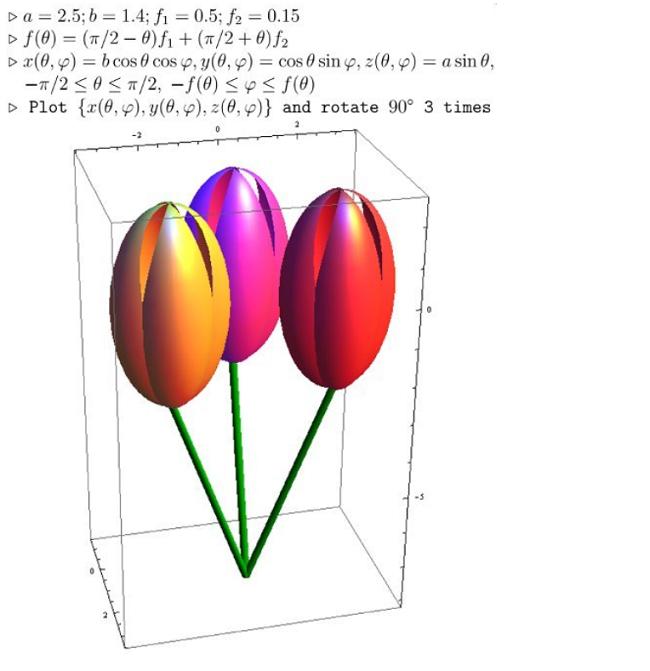 Bukiet tulipanów opisanych matematycznie