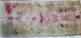 bidulafil ecodye madder wool