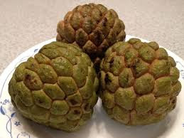 custard apple(sharifa) health benefits in urdu