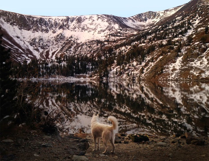 Virginia Lakes, California - He Toured America's Pristine Wilderness…And He Took His Human Along For The Ride.