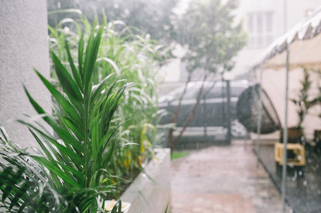 skrzynie ogrodowe na działkę, do ogrodu, na balkon, na taras