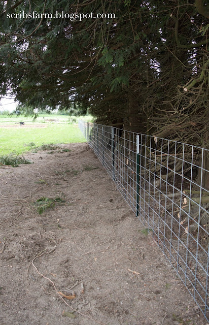 its fence day scribs farm