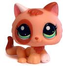 Littlest Pet Shop Pet Pairs Kitten (#1818) Pet
